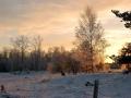Vinter 1